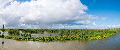 Fotografija Panorama of marshland on manmade artificial island of Marker Wadden, Markermeer,