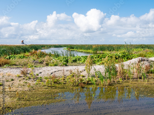 Fototapeta Watchtower and marshes on manmade artificial island Marker Wadden, Markermeer, N