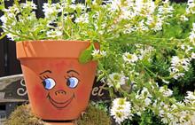 Lustig Bunte Blumentöpfe