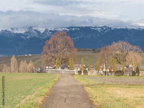 Fotografie, Obraz Chemin du cimetière à Perly en Suisse