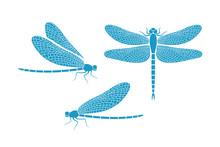 Dragonfly Logo. Isolated Drago...