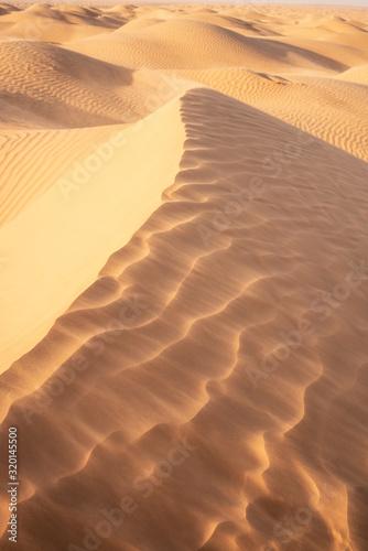 sand dunes in the desert Poster Mural XXL