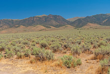 Great Basin View Along The Loneliest Highway In The America