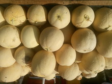 Stacked Cantaloupes For Sale At Market Stall During Sunny Day