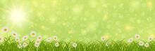 Spring Banner Vector Design Te...