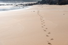 Beautiful View Of The Footstep...