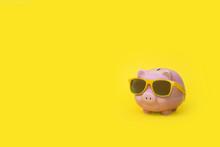 A Pink Piggy Bank In Sun Glass...