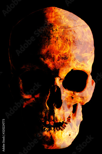 Fotografie, Tablou Human skull with a fiery texture