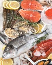 Fresh Raw Seafood.