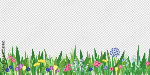 Obraz Spring garden grass and flowers border. Cartoon vector flower background. Green elements objects flora on transparent background - fototapety do salonu