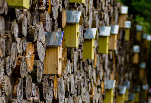 Fotografering Birdhouses On Logs