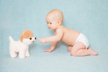 Cute Baby Touches The Nose Of A Toy Dog