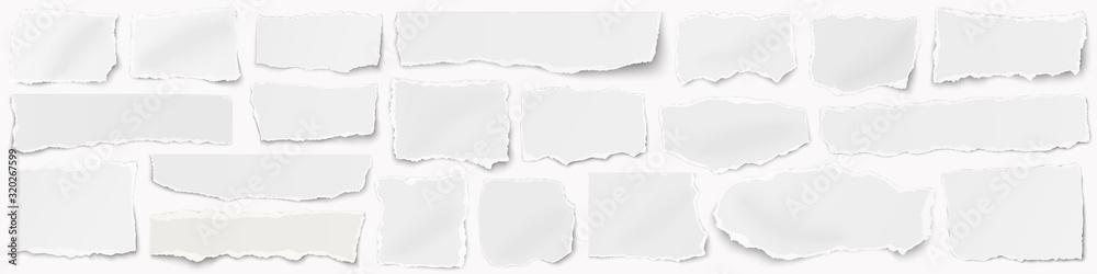 Fototapeta A long horizontal set of torn pieces of paper isolated on a white background.