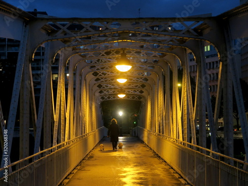Rear View Of Person Walking With Dogs On Bridge - fototapety na wymiar