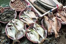 Fish-market-in-Hong-Kong-China