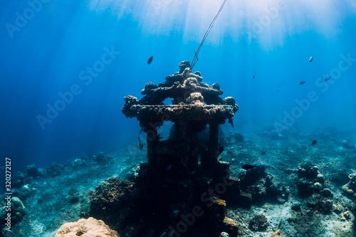 Fototapeta Underwater temple in ocean near Amed, Bali. Diving site in Bali obraz