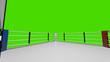 Leinwanddruck Bild - 3D render Boxing ring on green screen background.
