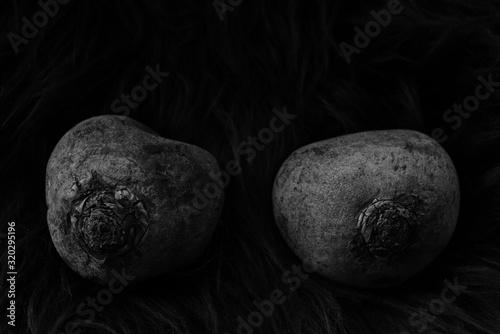 Obraz na plátně Wurzel Gemüse als Stilleben mit Karotten und Pastinaken