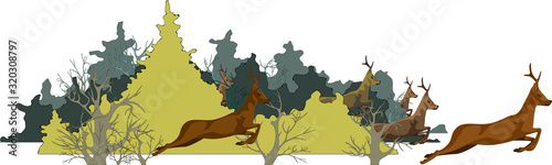 Cuadros en Lienzo image of a forest and running animals from it