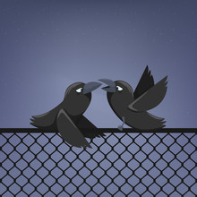 Vector Illustration Of Two Ravens On A Fence