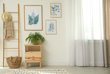 Beautiful Paintings And Plant ...