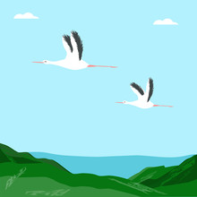 Storks Fly In The Blue Sky, Mo...