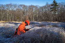 A Hunter Searching For A Bird In Tall Frozen Grass