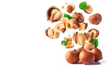 Hazelnuts Crushed Into Pieces,...