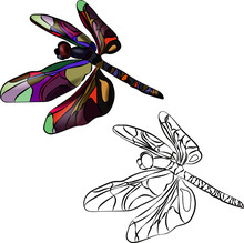Two Stylized Dragonflies, Iden...