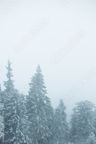 Fotografia, Obraz Mountain winter landscape