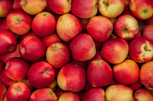 Red Ripe Apples As Background