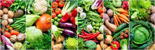 Fototapeta Food background with assortment of fresh organic vegetables obraz
