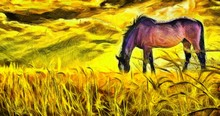 Oil Painting. Horse On Pasture