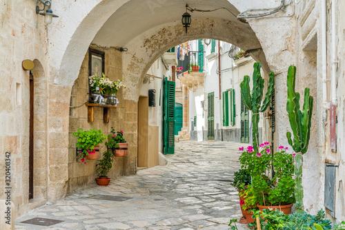 Scenic summer sight in Monopoli, Bari Province, Puglia (Apulia), southern Italy Fototapete