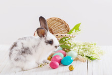 Easter Eggs And Little Rabbit  On White Wooden Background