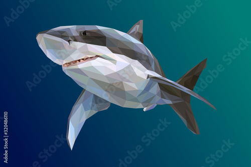Photographie Wild Shark Isolated in Lowpoly Illustration
