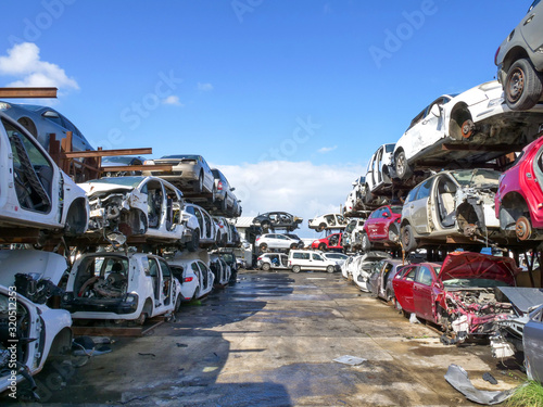Fototapeta Large Salvage Car parts and Vehicles lot, with rows of stacked totalled Cars obraz