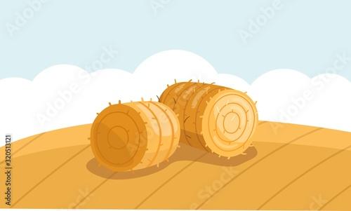Cuadros en Lienzo Round Hay Bale in Field in flat style
