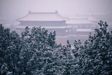 Forbidden City In A Morning Snow