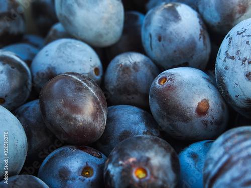Fototapeta fresh plums on wooden background obraz na płótnie