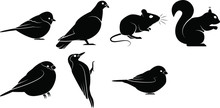 Set Of Black Silhouettes Of Birds And Rodents
