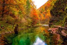 Famous Vintgar Gorge (soteska ...