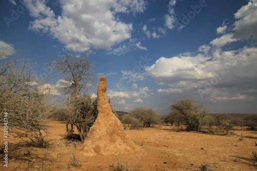 olbrzymie termitiery z dzrwami w tle w afryce w słoneczny dzień