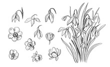 Set Of Outline Spring Flowers ...