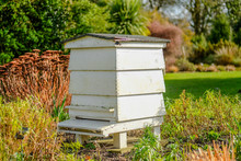 Large Wooden Beehive Seen Located In A Large Garden. The Well Maintained Lawn And Shrubs Are Clearly Evident
