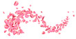 canvas print picture - Flying fresh pink rose petals on white background