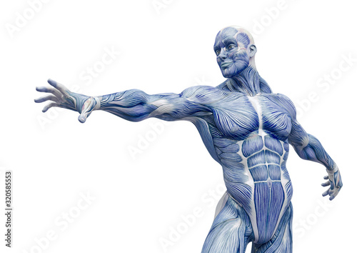 Photo muscleman anatomy heroic body is trying to reach in white background