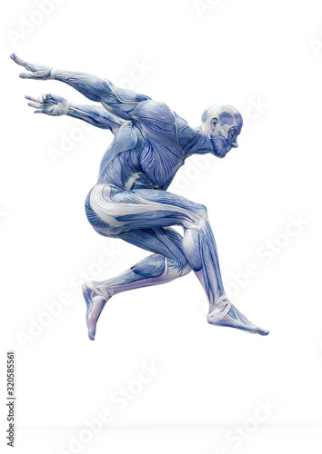 muscleman anatomy heroic body jumping in white background Wallpaper Mural