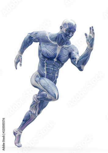 Fotografía muscleman anatomy heroic body is running in white background