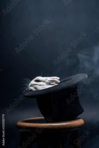 obraz PCV white rabbit sitting in magical hat on stool in dark smoky room
